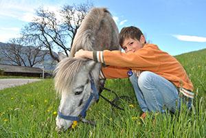 Pony am Galtinerhof: streicheln und reiten