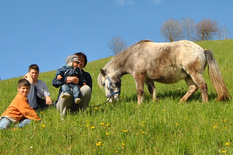 Wir-heissen-unser-neues-Pony-willkommen-Galtinerhof-Erlebnisbauernhof-Suedtirol